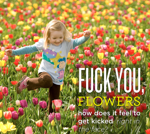 http://bucket.imustbuild.com/files/flowers.png